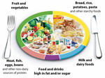 Healthy Eating for Students
