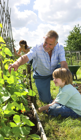 expert advice, grow your own vegetables,