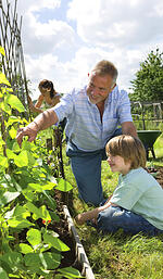 expert advice, grow your own vegetables,