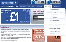 making money from home, domain names