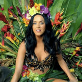 celebrity news and gossip, katy perry