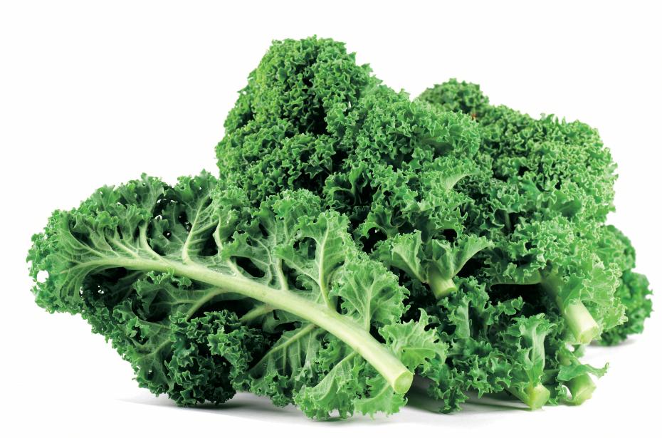 Crops in Pots, Kale