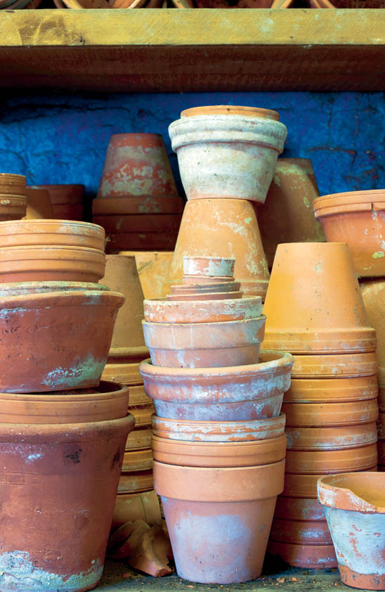 Crops in Pots Terracotta