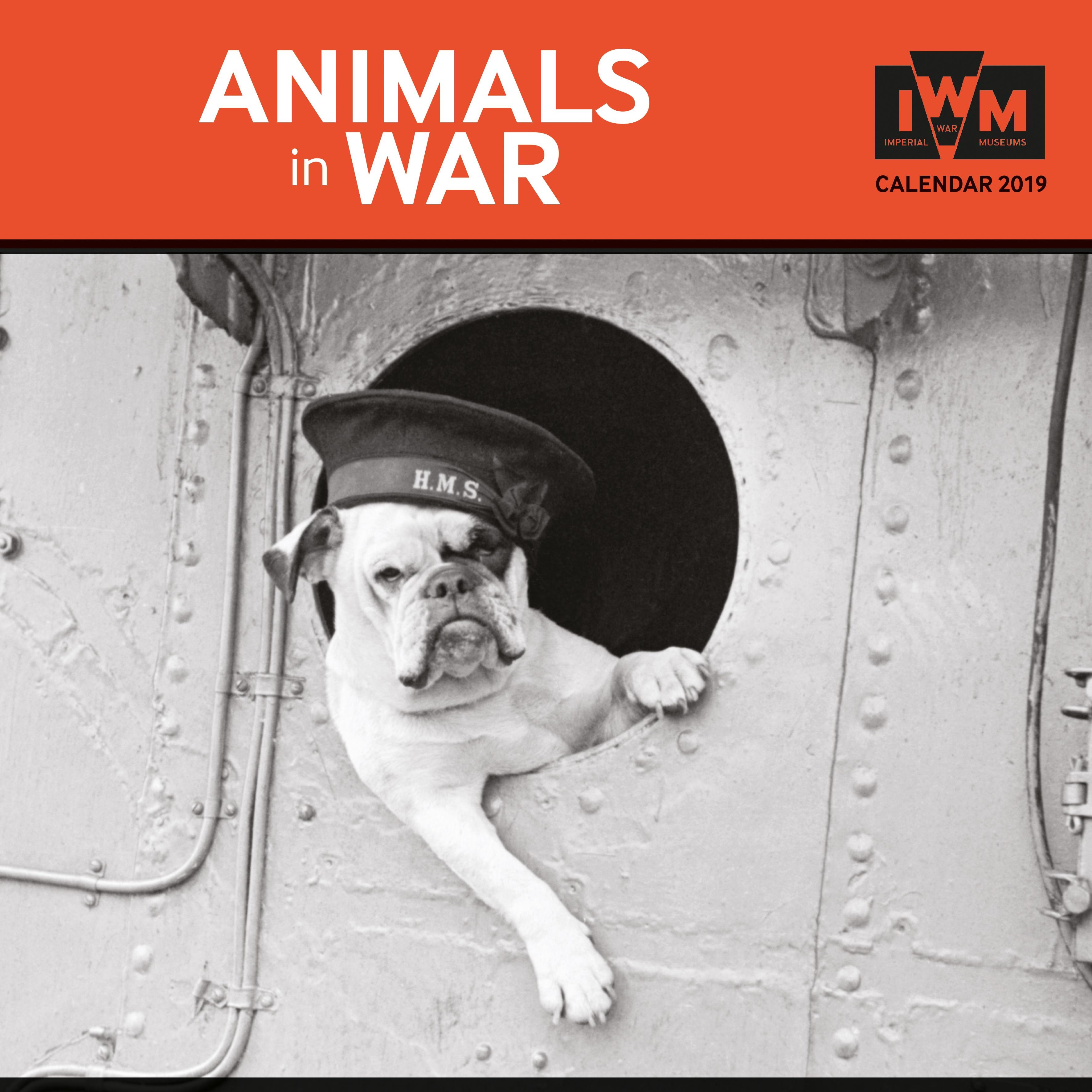 FT2019-11-IWM Animals in War-front